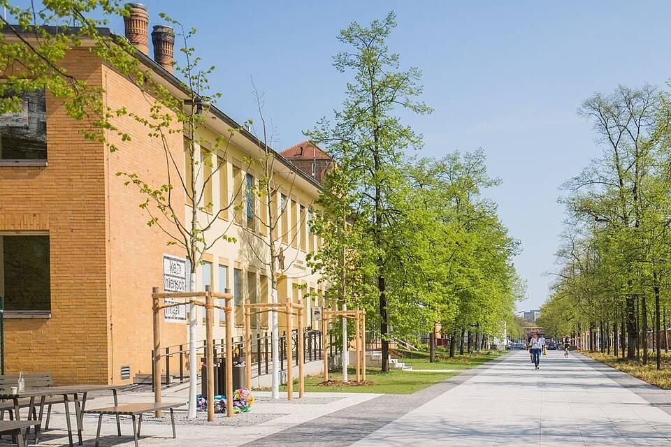 Semester Tu Berlin